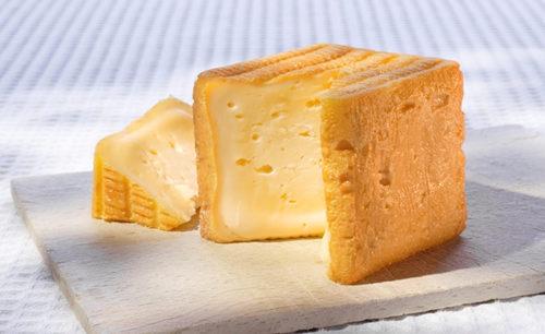Découvrir les fromages du Lot et Garonne