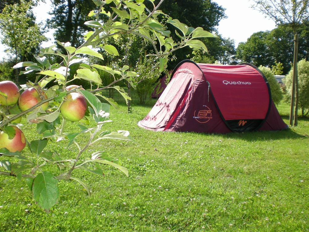 Découvrez les meilleurs campings près du Lot